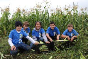 Our Lady of Lourdes Catholic School Student Service Day Farm